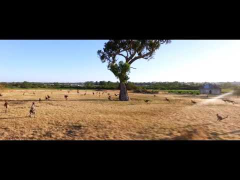 10 Days of Summer in Perth Western Australia