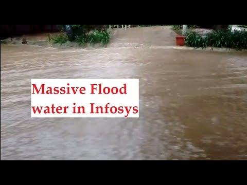 Massive Flood water in Infosys campus || Electronic City || Hosur Road || Bangalore
