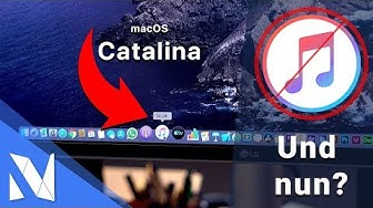 iTunes wird EINGESTELLT - Was nun? (macOS & Windows) | Nils-Hendrik Welk