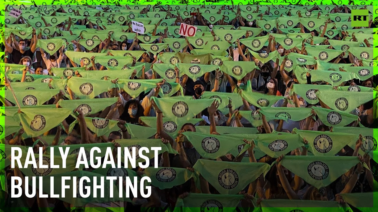 Madrid activists demand the end of bullfighting