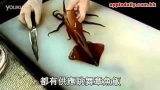 活章魚蓋飯 跳舞章魚飯 weboss網路行銷