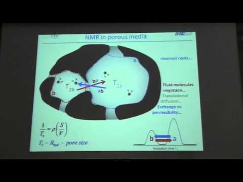 Physics Research, Development and Innovation in Oil Field NMR