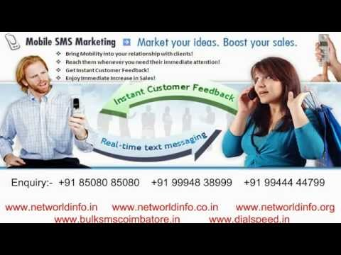 Web Designing Company in Coimbatore - Net World