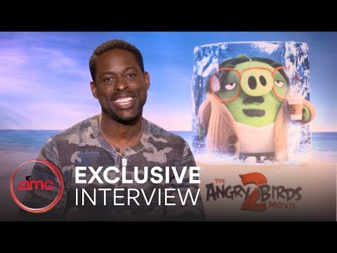 THE ANGRY BIRDS MOVIE 2 - Interview | AMC Theatres (2019)