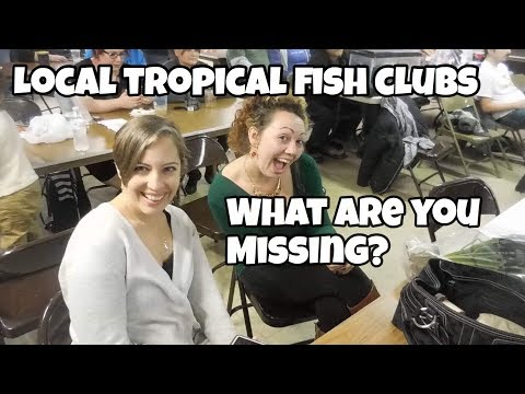 Joining Your Local Fish Clubs!