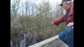 good day fishing