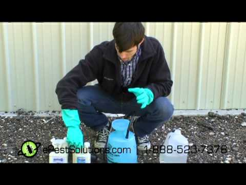 How to use different chemicals for diy pest control the how to use different chemicals for diy pest control the professional way epestsolutions solutioingenieria Image collections