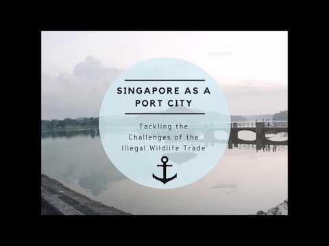 Farah Danial Mok - Singapore As A Port City: Tackling the Challenges of Illegal Wildlife Trade