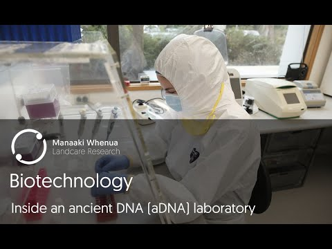 biotechnology:-inside-an-ancient-dna-(adna)-laboratory