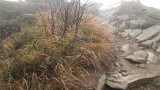 Bieszczady Bukowe Berdo - spacer w chmurach i wichurze