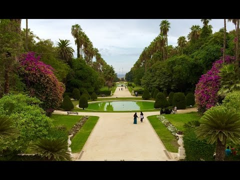 """حديقة الحامة"" One of the World's Most Beautiful Gardens in North Africa: ""The Test Garden"", Algiers"