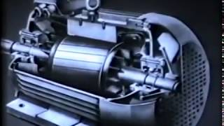 Короткозамкнутый и фазный ротор