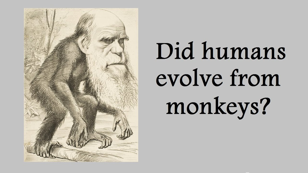 "darwin s theory of evolution and Over 500 scientists have come together to officially denounce darwinism, claiming his theory of evolution is false and based on bad science in a paper entitled, "" a scientific dissent from darwinism ,"" scientists have thrown serious doubt on natural selection's ability to create complex biological systems."
