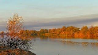 Осенняя рыбалка в Астраханской области 2019 Ловля судака и щуки