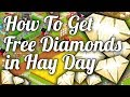 How to get free diamonds in Hay Day! - Hay Day Guide