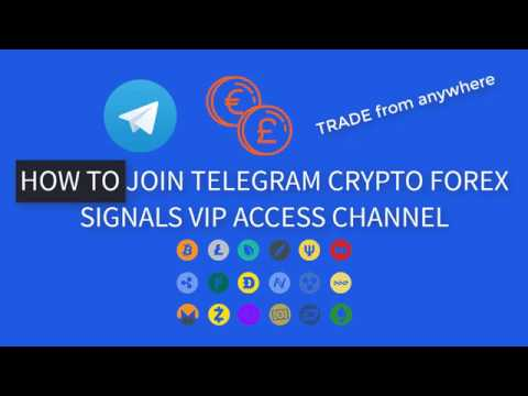 Forex trading vip crypto