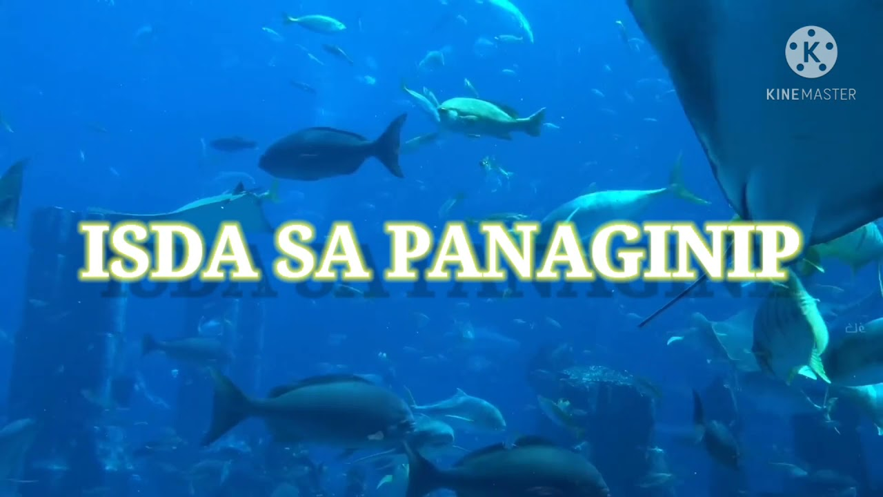 what is an isda negotiator