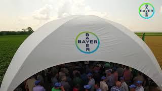 Bayer Agro Arena Marghita