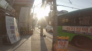 동묘역에서 금호동까지 걷기