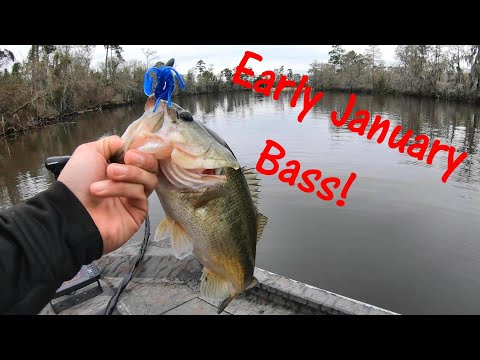 Louisiana Bass Fishing In January...Ethan Doing His Thing!