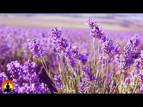 Baby Sleeping Music, Sleep Music, Calm Music, Delta Waves, Relaxing Music, 8 Hour Sleep, �