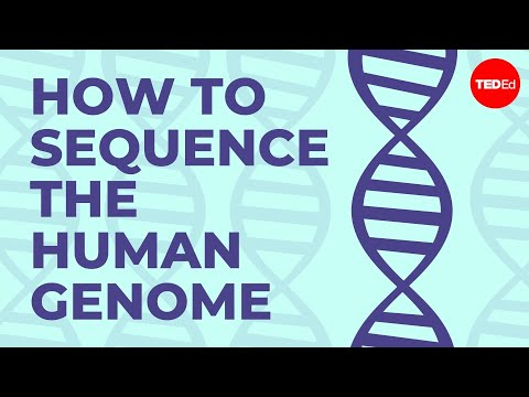 How to sequence the human genome - Mark J. Kiel