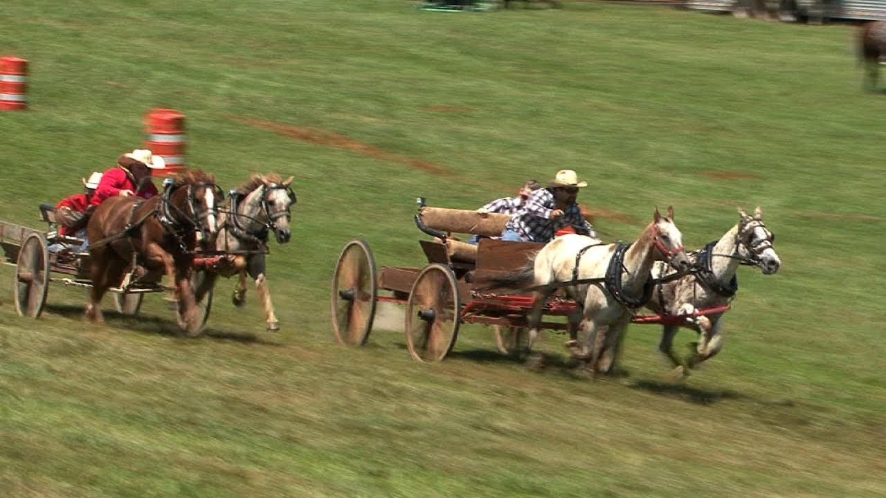 Wagon Racing For Cash Baker Spain Stampede Youtube