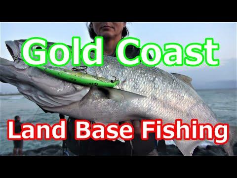 Gold Coast Season's Tailor Rockydfishing Vol115