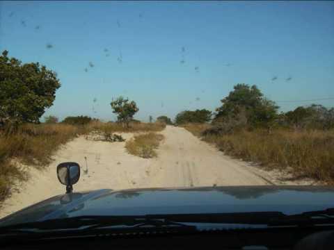 Maputo Hoje Parte 2