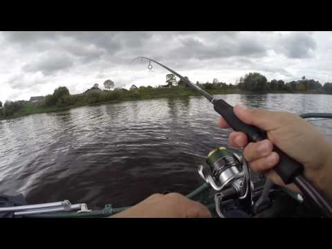 судак как ловить осенью видео