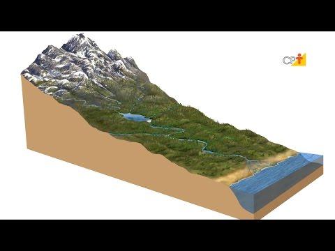 O Ciclo Hidrológico - Curso Recuperação e Conservação de Nascentes