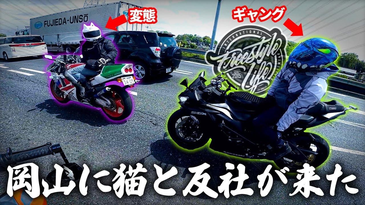 【※今回は平和です】岡山にフリスタとねこかずくんが来たゾ