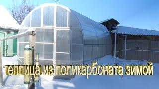 Обзор теплицы зимой.Теплица из поликарбоната зимой