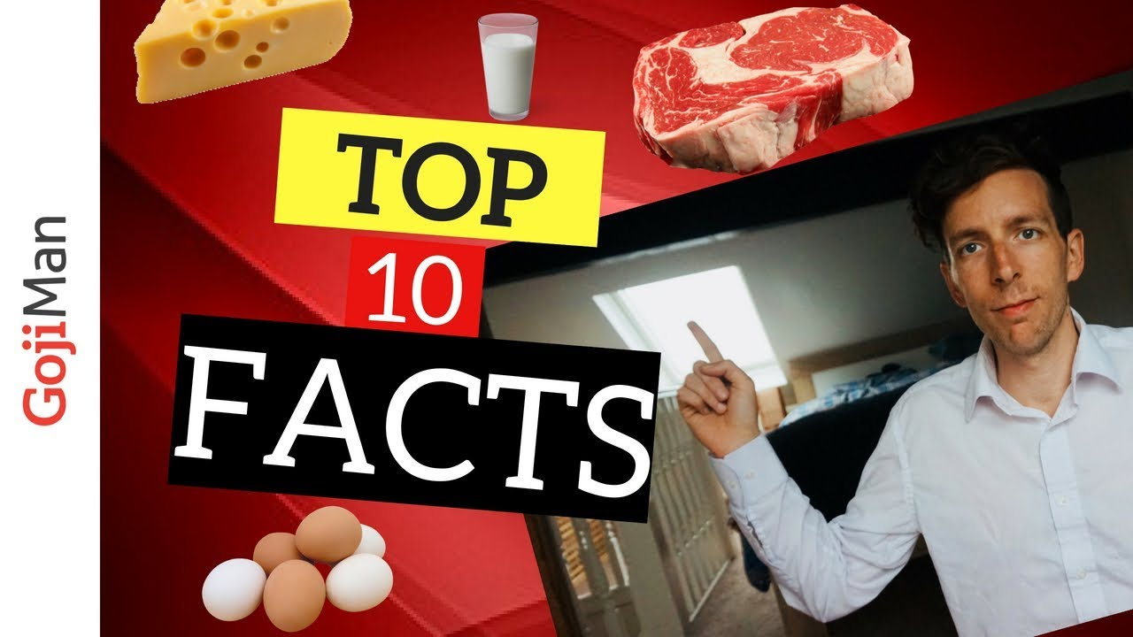 Why Animal Protein Is Bad For You - Top 10 Facts