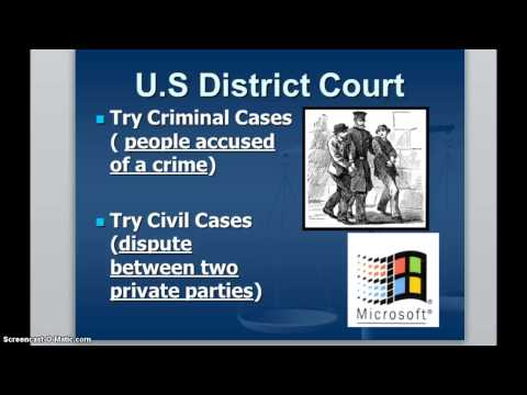 Federal Courts Video