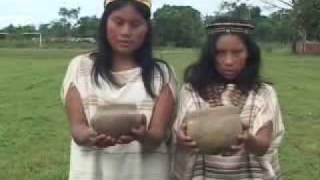 Vida y Cultura en la Amazonia Peruana