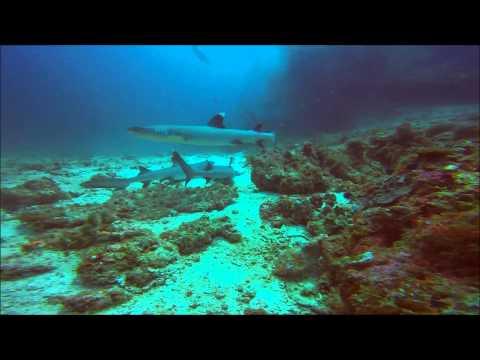 "Maldives. DC ""Poseidon"""