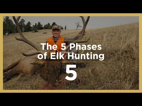 LATE SEASON | The 5 Phases Of Elk Hunting