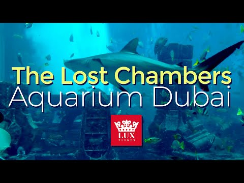 The Lost Chambers Aquarium Dubai – Hotel Atlantis Dubai