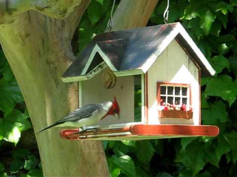Vrubel bird homes feeders casitas y comederos para for Casitas de jardin de madera