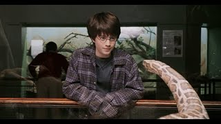 All Parseltongue Scenes in Harry Potter