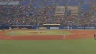 At a Tokyo Yakult Swallows baseball game