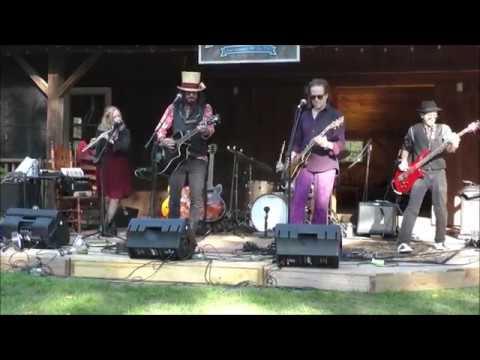 Gandalf Murphy And The Slambovian Circus Of Dreams Fiddle & Folk Festival Benner's Farm Clip 2