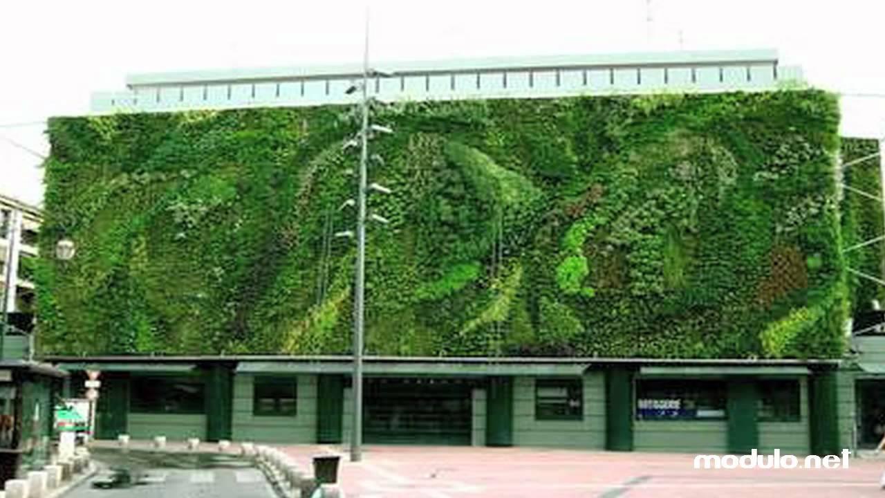 Modulo giardini verticali youtube - Pannelli per giardini verticali ...