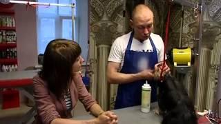 Груминг - искусство ухода за шерстью и кожей животных
