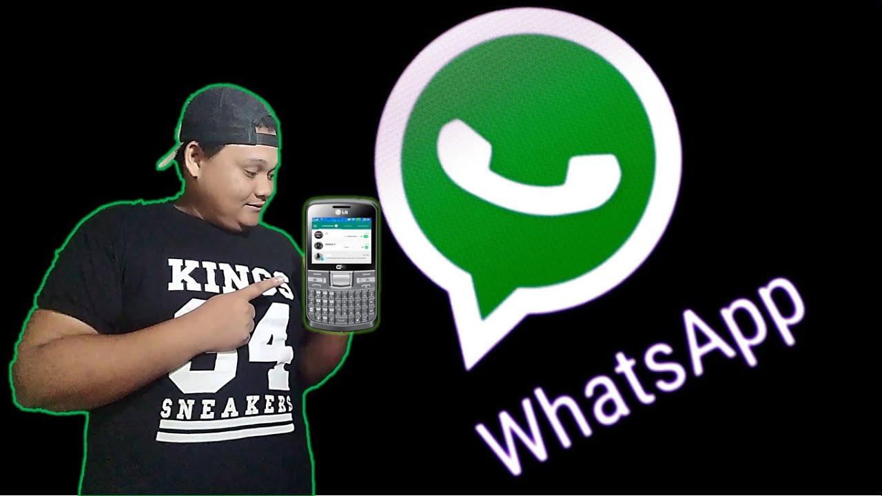 whatsapp para celular lg c300