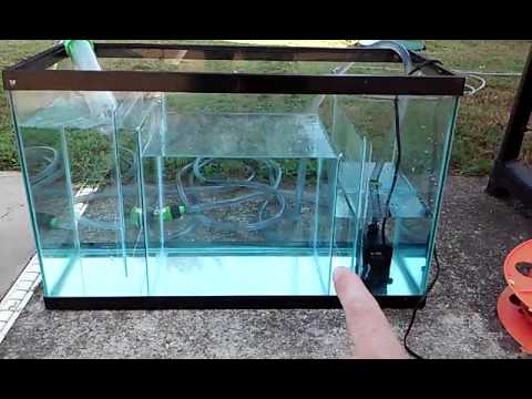 diy 29 gallon sump refugium youtube