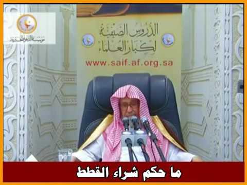 «Prendre des chats en photo est interdit, sauf nécessité», selon un cheikh saoudien