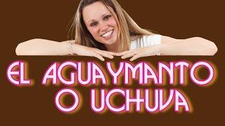 Aguaymanto  o Uchuva - Conoce las propiedades del Aguaymanto Una fruta medicinal