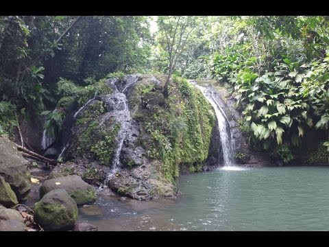 Cascades en Guadeloupe | Parc National